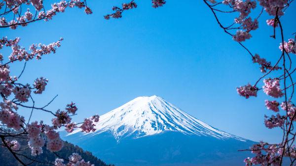 Entdecken Sie Japan